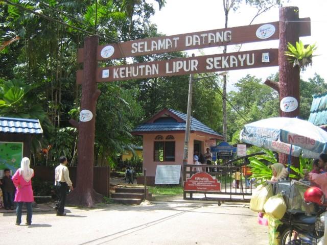 Tempat-Menarik-Di-Terengganu-Hutan-Lipur-Sekayu