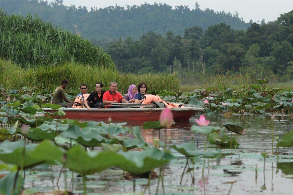 Tempat-Menarik-di-Pahang-Tasik-Chini