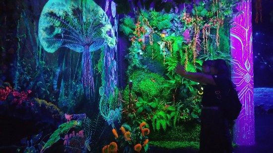 Tempat-Menarik-di-Penang-3D-Glow-In-The-Dark-Museum
