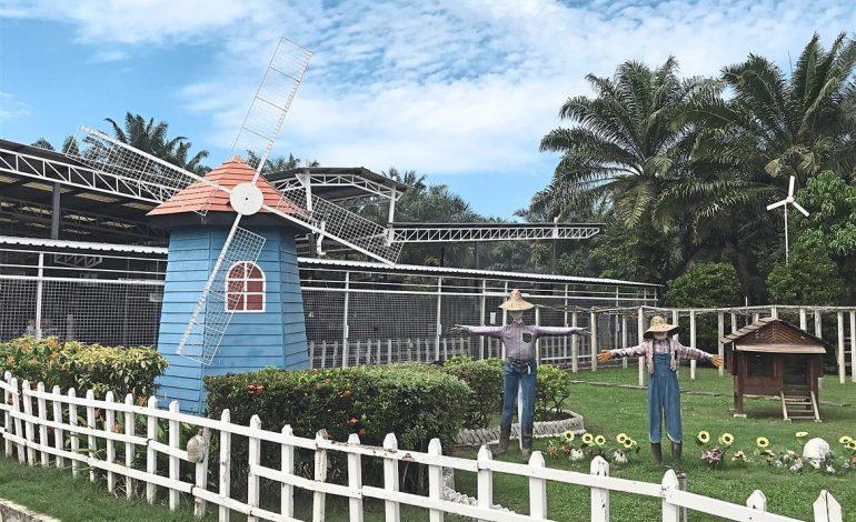 Tempat-Menarik-di-Selangor-Kuan-Wellness-Eco-Park