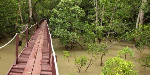 Tempat-Menarik-di-Selangor-Taman-Alam-Kuala-Selangor