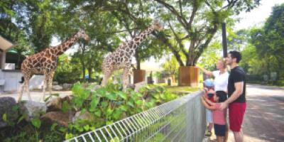 Tempat-Menarik-di-Selangor-Zoo-Negara