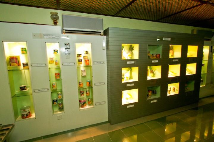 Tempat-Menarik-Di-Johor-Muzium-Nenas