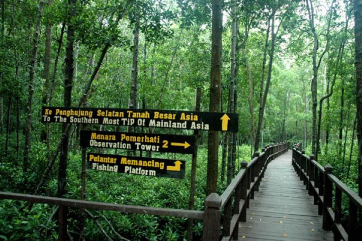 Tempat-Menarik-Di-Johor-Taman-Negara-Tanjung-Piai