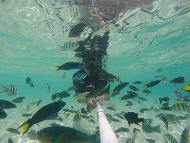 Tempat-Menarik-di-Pulau-Rawa-snorkelling