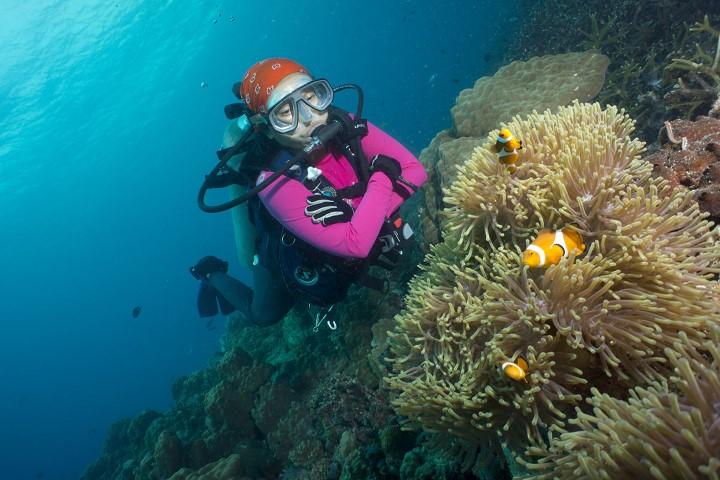 Tempat Menarik di Pulau Tioman-16